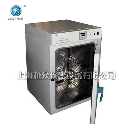 鼓风烘箱_干燥箱DHG-9620A