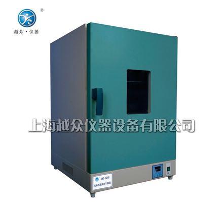 电热恒温干燥箱|鼓风干燥箱