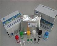牛睾酮(T)Elisa试剂盒