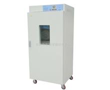 DHG-9073BS-Ⅲ电热鼓风干燥箱