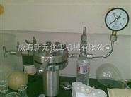 微型反应器(带进气、空口、防爆口)