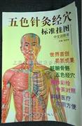 五色针灸经穴标准挂图