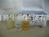 多功能DNA纯化回收试剂盒