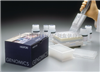 Human free fatty acids,FFA ELISA KIT