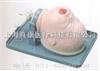 KAH-15气管插管模型|气管插管训练模型|新生儿气管插管模型