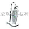 溶解氧分析仪 便携式溶氧仪