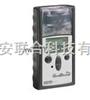单一可燃气检测仪(泵+探针