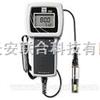 溶解氧测量仪