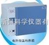 DHP-9272电热恒温培养箱