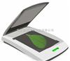 DHYMJ-C叶面积测定仪 叶面积测量仪 微电子面积测量仪 叶面积仪