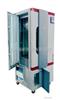 BIC系列人工氣候箱