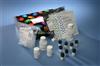 人LMP-1试剂盒96人份/48人份人潜伏膜蛋白1