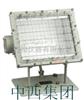 M325463矿用隔爆型泛光灯(国产)