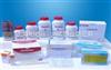 核黃素-5'-腺苷二磷酸二鈉
