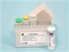 小鼠IFN-γ小鼠γ干扰素试剂盒