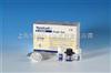 大鼠APC試劑盒96人份/48人份大鼠活化蛋白C