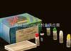 大鼠TNF-β 试剂盒96人份/48人份大鼠肿瘤坏死因子β