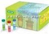 大鼠fractalkine/CX3CL1試劑盒96人份/48人份大鼠趨化因子