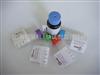 A-01219TNF家族B细胞激活因子抗体