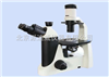 SW-2000D倒置生物显微镜 适合大培养皿 半透明物体