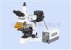 YG-800實驗室熒光顯微鏡