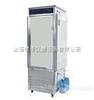 RXZ-0288低温人工气候箱