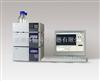 LC-100 梯度系统液相色谱仪
