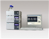 LC-100 梯度系统AG真人游戏平台液相色谱仪