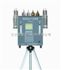 DS/3000BⅣ便携式恒温大气采样器