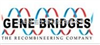 Gene Bridges GmbH 特约代理