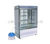LRH-550-Y藥物穩定性試驗箱