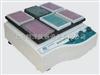 QB-9002(调速、定时)微孔板快速振荡器