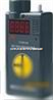 DS-100硫化氢检测报警器