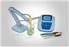 MP522丝瓜app免费安卓下载安装精密型PH和電導率測量儀