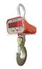 OCS--高温电子秤,上海高温电子秤,耐高温的电子秤