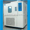 WGD/SH61高低温恒定温热试验箱