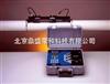 DS-TFXP便携式超声波流量计