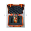 DP-Meter水果无损检测设备/水果无损检测仪/水果成熟度检测仪