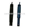 DP-ECS-301纯水PH电极 PH电极