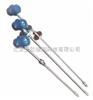 DP-WAY-4III铠装型液位变送器/铠装型液位变送仪