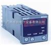 P6100P6100过程控制器
