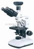 BK2000/3000生物显微镜