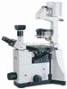 IBE1000倒置生物显微镜