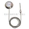 WTZ-280全不锈钢防腐型压力式温度计WTZ-280
