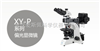 XY-P偏光显微镜