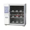 ZFX-10A砖瓦泛霜箱