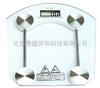 DS/SH-8003型电子玻璃秤