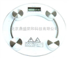 DS/SH-8002电子玻璃秤