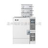 煤气或二甲醚专用气相色谱仪GC1650 打火机液化气检测仪器
