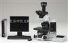 Olympus BX63奥林巴斯BX63生物显微镜
